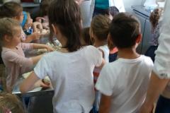 activitatisciale-scoalaaltfel-iul2017_09